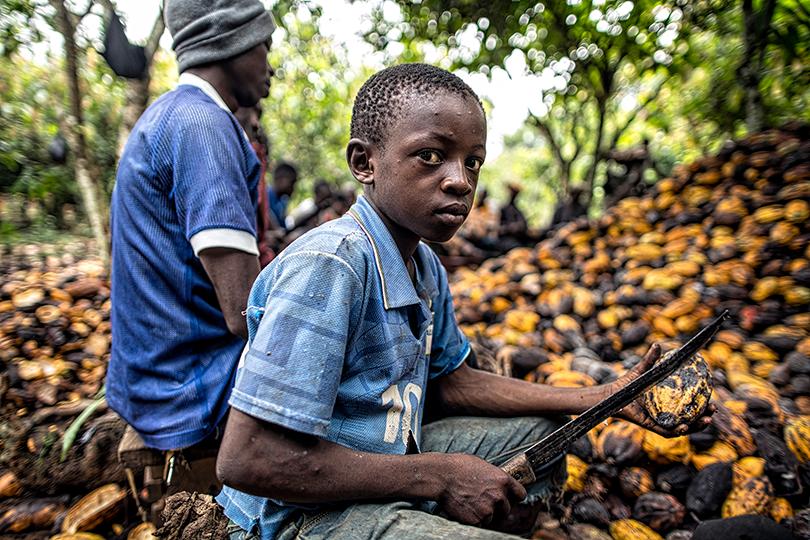 شركات شوكولاتة تواجه تهما بعمالة أطفال
