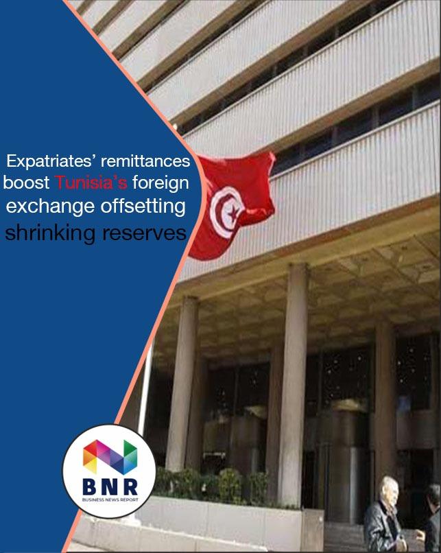 Expatriates' Remittances