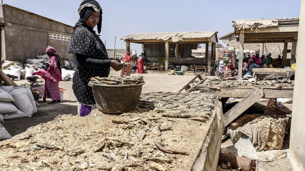 البنك الدولي يدعم الدول الفقيرة
