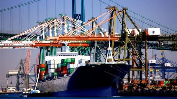 Egyptian exports