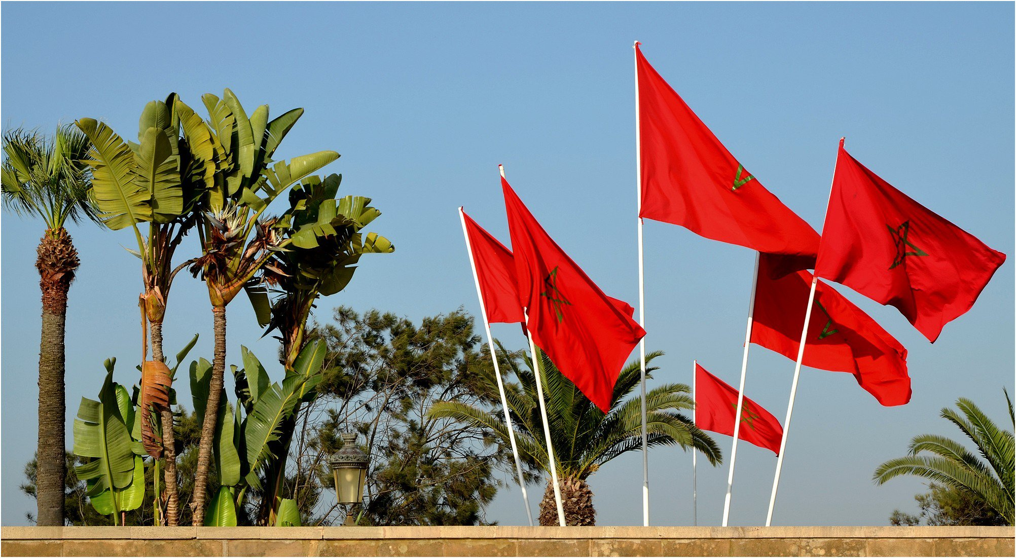 واردات المغرب